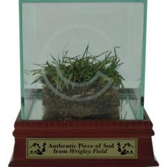 Authentic Wrigley Field Sod in Display Case
