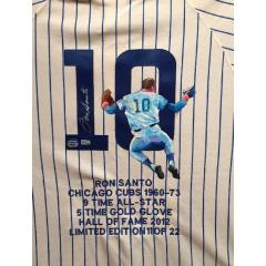 Ron Santo Hand Painted Jersey by Al Sorenson