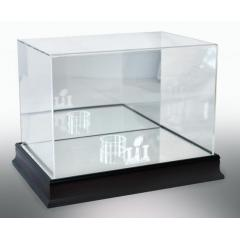 Patriots Super Bowl LI Custom Display Case