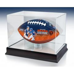 Chicago Bears NFL 100th Legacy Art Football & Display Case