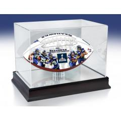 Seattle Seahawks NFL 100th Legacy Art Football & Display Case
