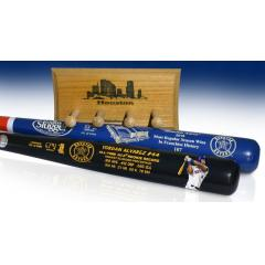 Alvarez Rookie Art Bat & Astros Most Wins Two Bat Set